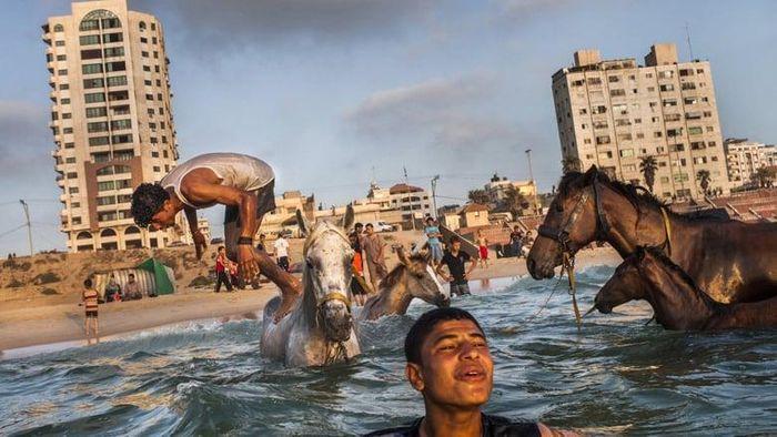 Gaza Poster