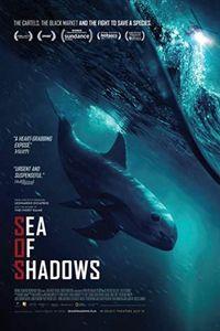 Sea of Shadows Logo