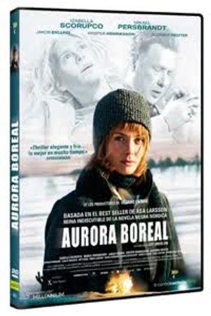 Aurora boreal Poster